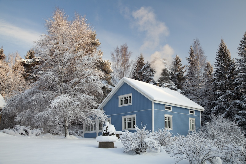 Blue house in the woods during winter.