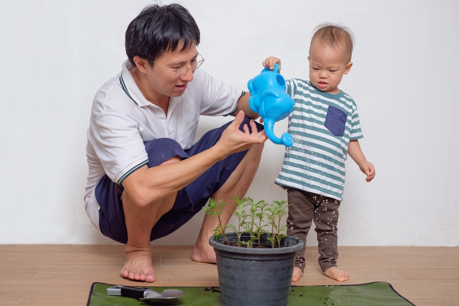 Smiling Middle age father teaching his cute toddler baby boy child about plants at home, HVAC Ways to Go Green in Your Home | AC, Heat Pumps, Maintenance