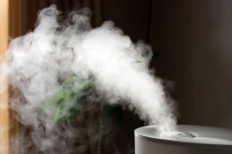 Humidifier spreading steam into the living room, Why Do I Need a Humidifier in the Fall? | Indoor Air Quality | Vailles